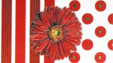 full_vitel_k_gerbera_mini_275x400_2012671450